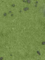 Cattle_Pasture_w_4df9df15aea2b.jpg