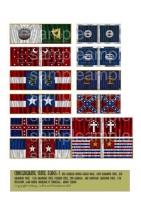 Confederate_Stat_4e8ecf2f12ac3.jpg