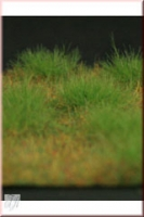 Grass_Mat_Short__4dd7b2939ddbb.jpg