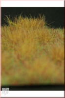 Grass_Matte_Dry_4dd3a175261a2.jpg
