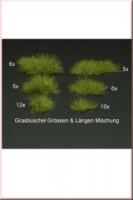 Grass_Tufts_Mixe_4dd7877355881.jpg