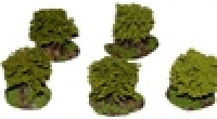 Plantation_Orcha_4dde374a43bb1.jpg